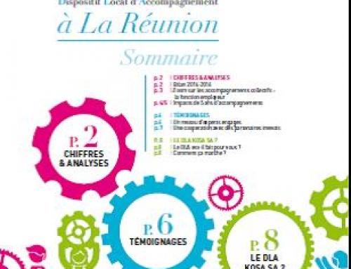 Le DLA à la Réunion (édition 2016)